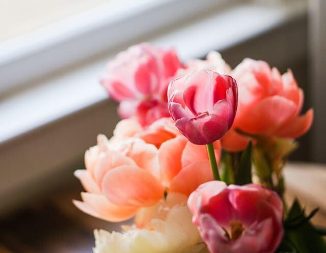 light-romantic-flowers-date-7550 (1)